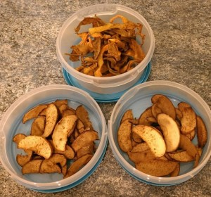 Apple and Carrot Crisps
