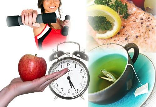 Increasing Metabolism & Metabolism Calculator