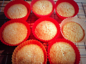 Coconut fairy cakes