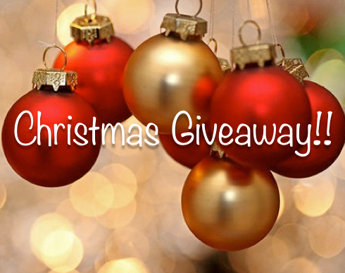 2013 Christmas Giveaway!