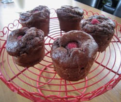 Chocolate Protein Muffins