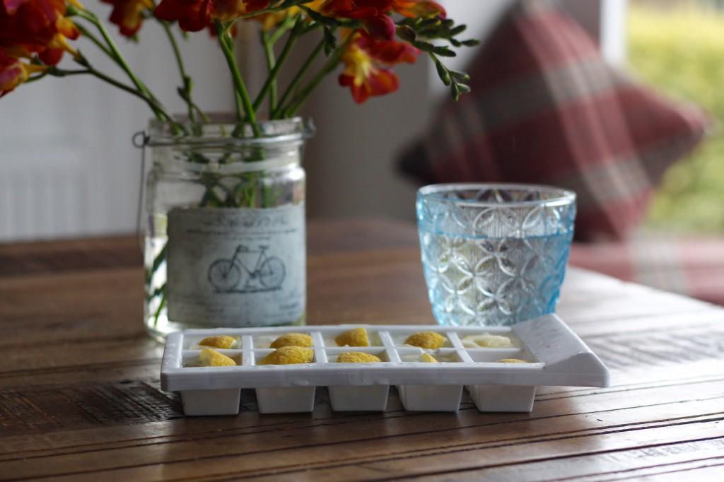 Lemon Icecubes