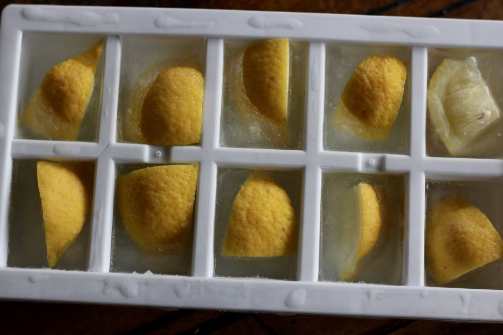 Lemon Icecubes