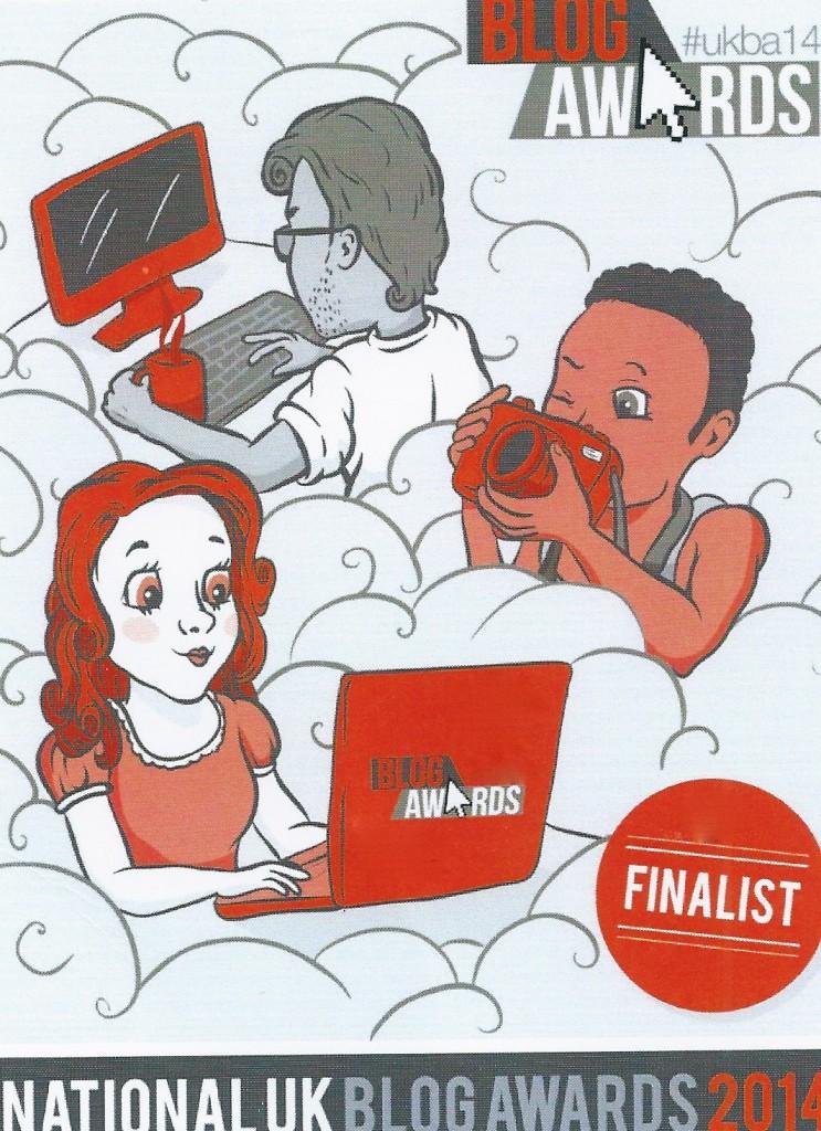 UK Blog Awards 2014 Finalist