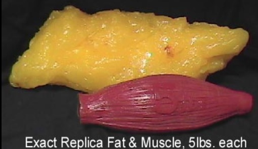 fat vs muscle 5lb
