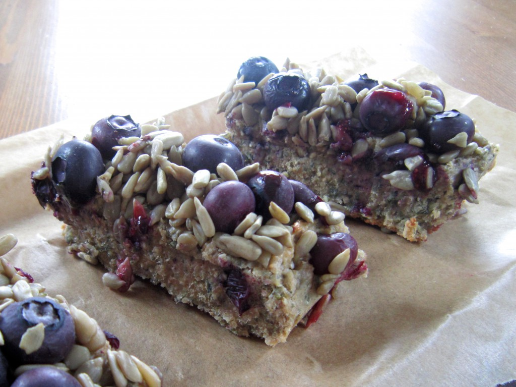 Vanilla Energy Protein Bars